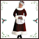 Adult Mrs. Claus Costumes and Accessories